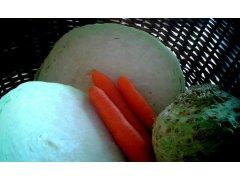 Zelí, kapusta, petržel - nevíte co se zeleninou? Nebojte se zeleniny!