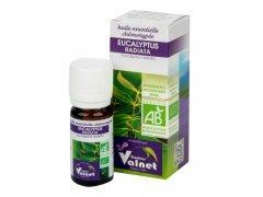 Éterický olej eukalyptus radiata 10 ml BIO DOCTEUR VALNET